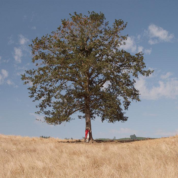 Franks Eternity Tree